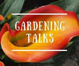 Adventurous Plants Gardening Talks with Ben Candlin